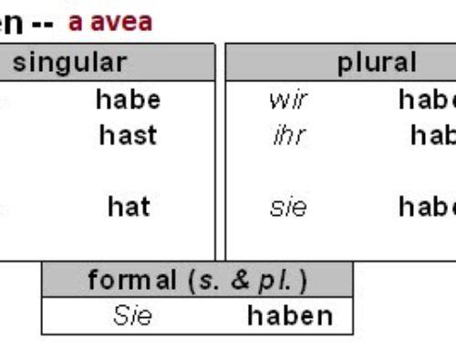 Conjugarea verbului haben